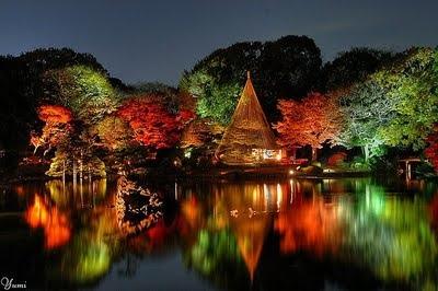 Buddismo cultorweb 39 s blog for Giardini giapponesi