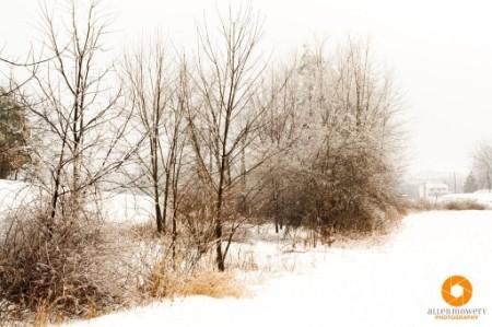 fotografare in inverno, la neve
