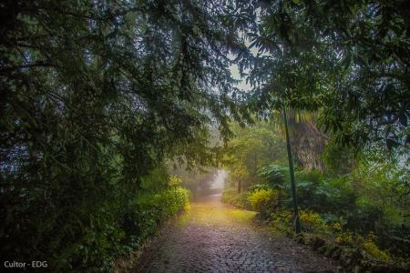 Fotografia sotto la pioggia: luci, colori e atmosfere