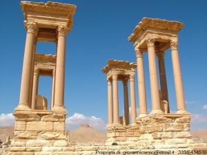 Palmira-tetrapilo
